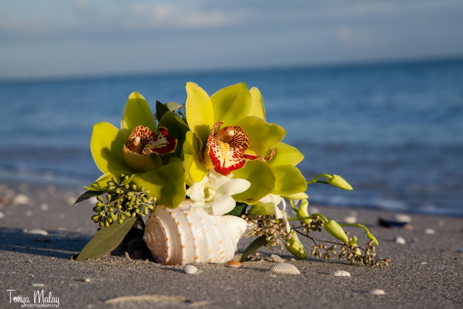 Tropical Beach Wedding Florida